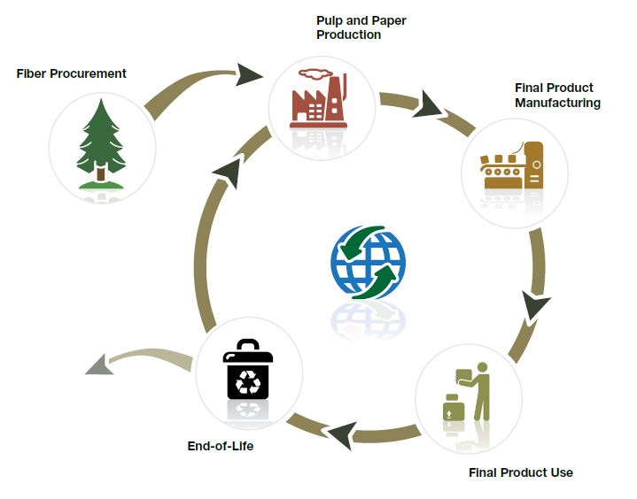 Assessment Paper Life Cycle Assessment Paper